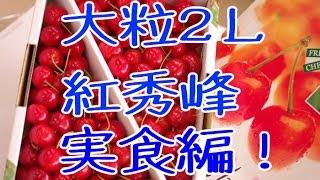 紅秀峰さくらんぼ販売。2Lの実食編!山形産はお中元果物にぴったり。通販で取寄 Benisyuho Japanese cherry
