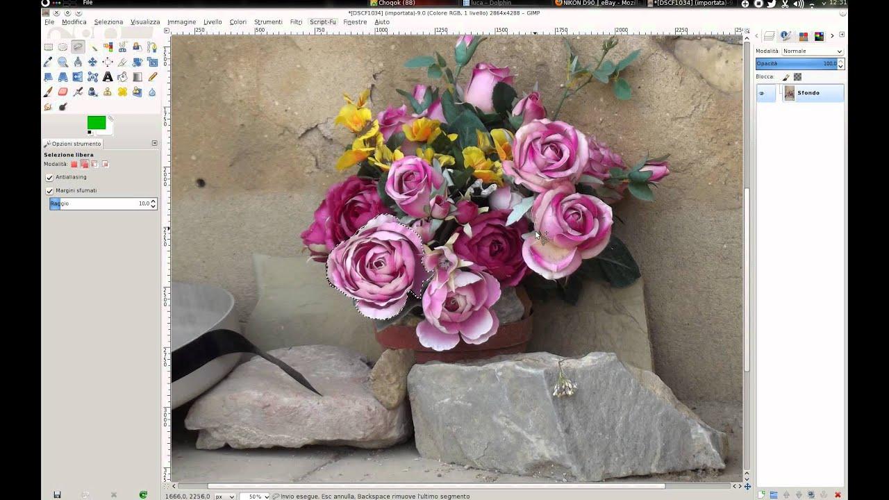Foto Bianco E Nero Con Particolari Colorati Con Gimp Metodo Velocissimo