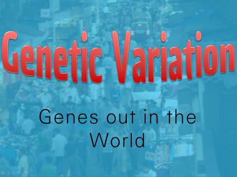 2-5 Genetic Variation