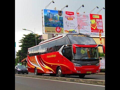 Trip Report Putera Mulya Scania K360IB SR-2 XHD PRIME|| CEPAT & NYAMAN