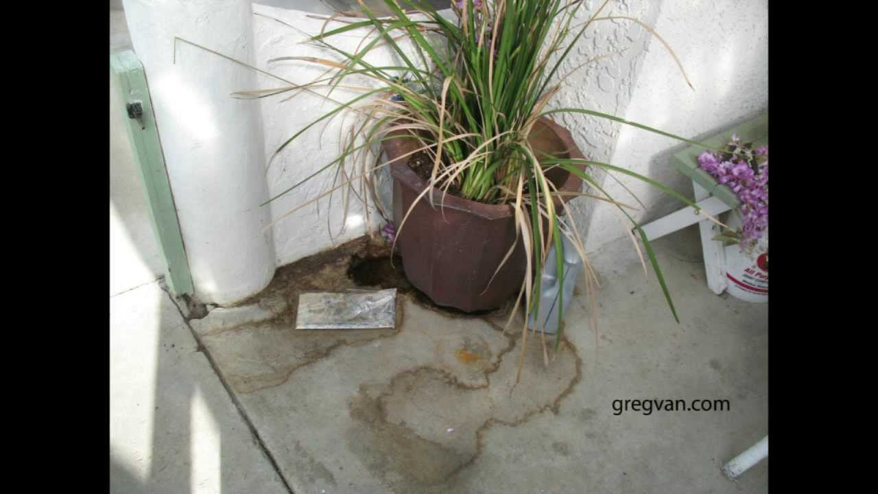 Over Watering Potted Plants Can Lead To Stains In Concrete