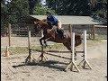 Danielle & Fiona - KMF jump lesson July 7, 2017