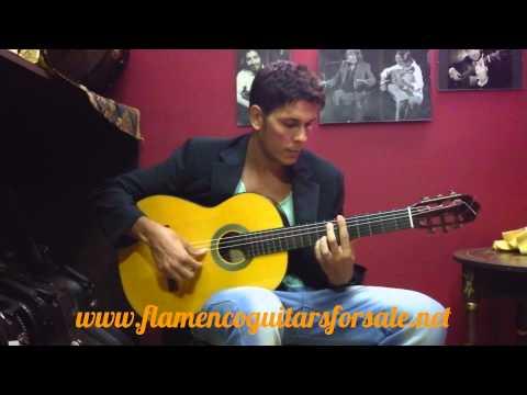 Lester Devoe 2012 flamenco guitar for sale