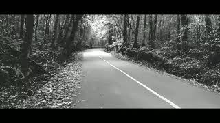 Virgoun ft Audy - Selamat Tinggal (oficial video cover)