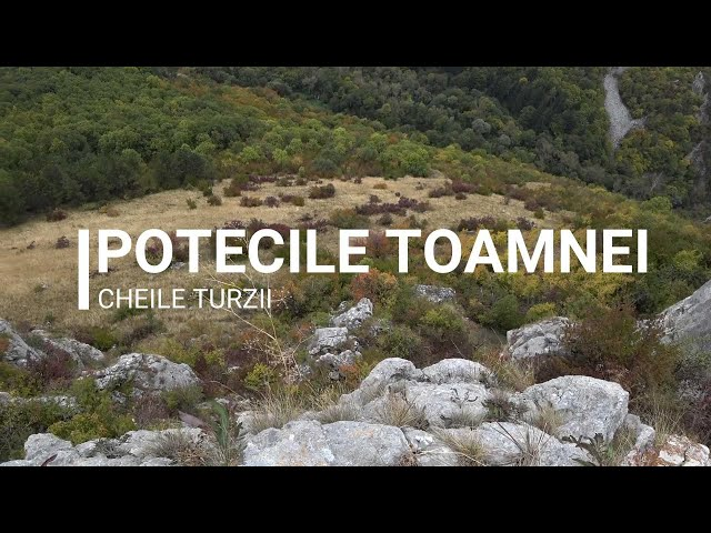 Potecile toamnei in Cheile Turzii