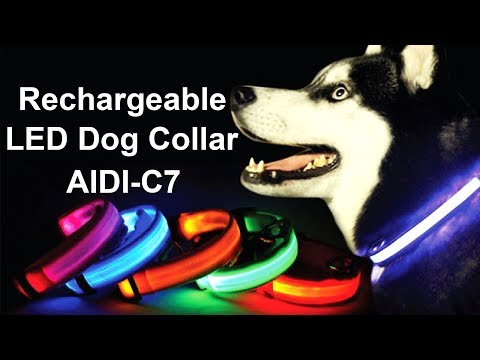 Custom Pet RGB Light Up Rechargeable LED Dog Collar AIDI-C7 | Flashing Dog Collar Light