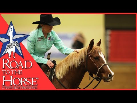 Road to the Horse 2017 - Extra Footage - Sarah Dawson Clinic