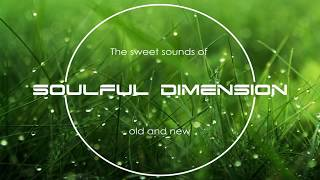 Video Soulful Dimension 33 - Soulful House Session from Old Channel download MP3, 3GP, MP4, WEBM, AVI, FLV Juli 2018