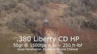 Edward Wilks - Ammo Testing: Liberty Civil Defense .380