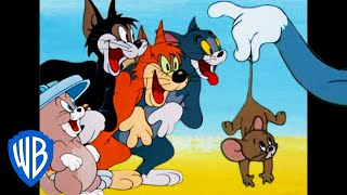 Tom & Jerry | What a Cat-astrophe!  | Classic Cartoon Compilation | WB Kids