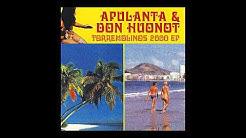 Apulanta & Don Huonot - Pääkallokiitäjä