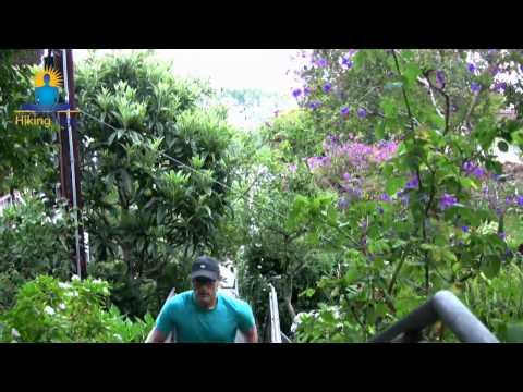 Hiking Yoga Intro