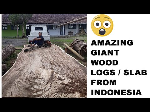 Amazing Indonesia Exotic Wood Logs Hardwood And Timber Slab Wood / Sawmill Lumber Process / Export