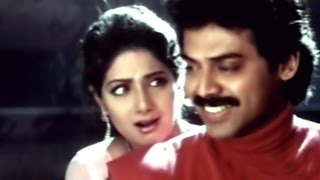 Ammayi Muddu Ivvande Full Video Song || Kshana Kshanam Movie ||  Venkatesh, Sridevi