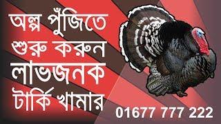 টার্কি পালন কতটুকু লাভজনক হবে ।। turkey farm profitable in Bangladesh