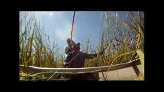 Harvesting Wild Rice