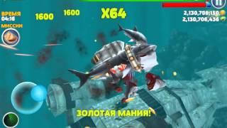 Игра акулы