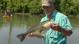 TN Wild Side-Small Boat, Big Bass