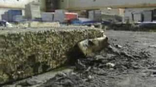 Two Men Set Mosque on Fire