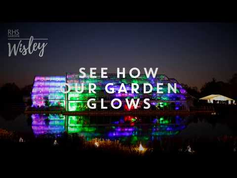 RHS Garden Wisley | See how our Garden Glows 2017