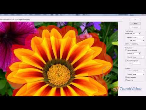 Фильтр Extract в Adobe Photoshop (2/20)