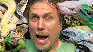 CAN I FEED THE ENTIRE REPTILE ZOO IN 2 HOURS?? IF NOT SHE WILL KILL ME!! | BRIAN BARCZYK