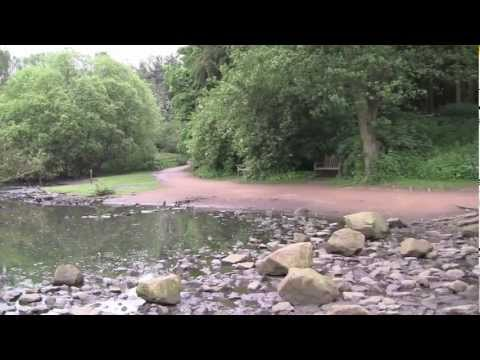 A Walk Around Golden Acre Park, Bramhope, Leeds, West Yorkshire, UK - 13th June, 2012 (720 HD)