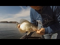 What Color Jigs To Use Crappie Fishing! Arkansas Crappie Fishing Jan 2017