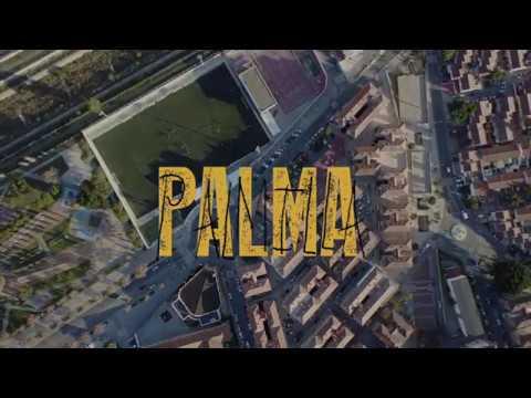 Exposición 'Palma Palmilla' de Marina Reina