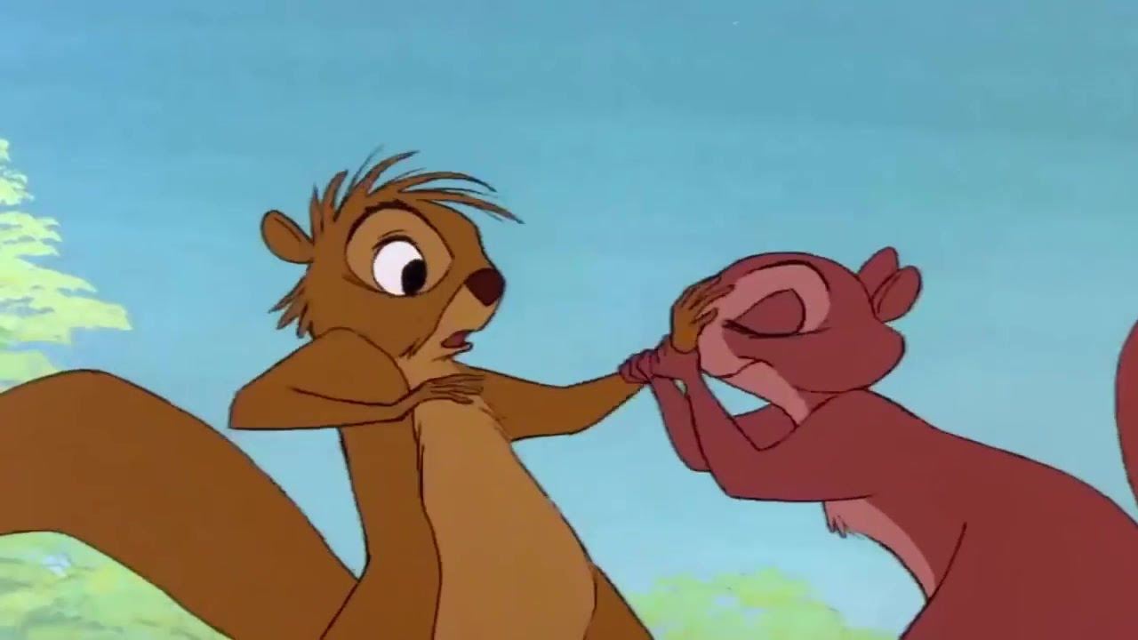 Cartoon Pic Of Squirrel: The Sword In The Stone ♪ Squirrel Scene HD ♥ Cartoon For