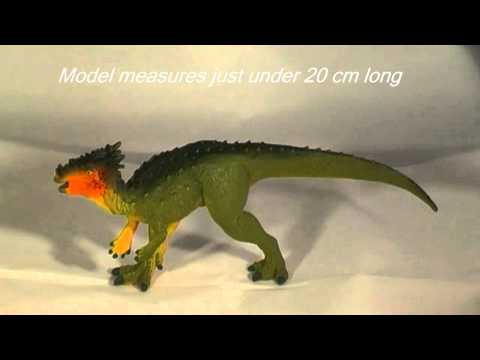 Dracorex Dinosaur Model Review (Safari Ltd)