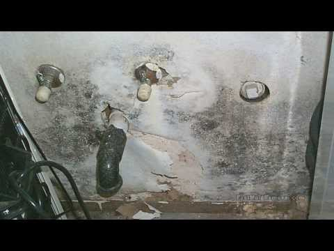 Dampness in Homes & Buildings by FastMoldRemoval.com