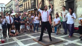 Flamenco Man dance