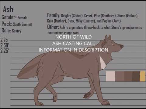 NORTH OF WILD|CASTING CALL|SUPPORT CHARACTER|ASH