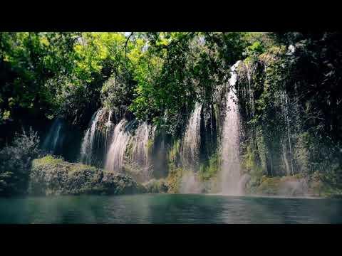ALUNA - Juntos (Mix) {ft. Mose & More} [Folktronica / Medicine Music]