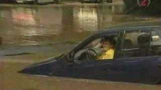 stupid woman driver