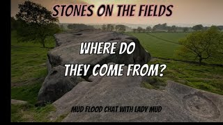 Mud flood stones - From where do the stones come from?