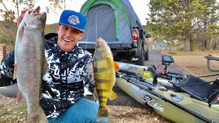 Catch Cook and Camp HIGH Mountain Reservoir JUMBO PERCH Personal Best
