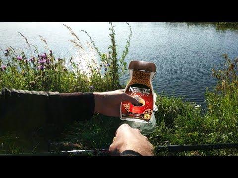 Караси на КОФЕ! На рыбалке, подводная съемка, реакция рыбы на кофе, прикормка из кофе