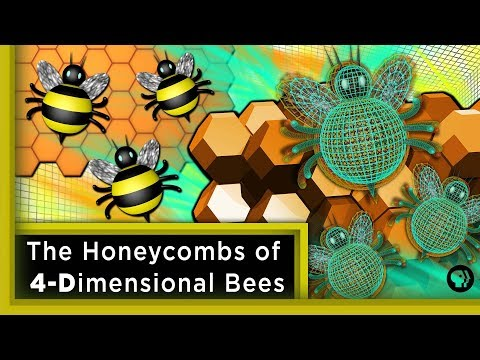 The Honeycombs of 4-Dimensional Bees ft. Joe Hanson | Infinite Series