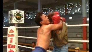 Лорен Аведон vs Тайца