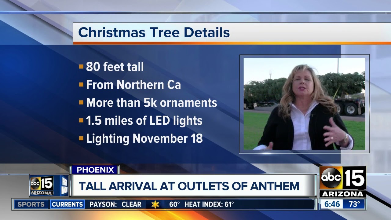 Anthem Christmas Tree