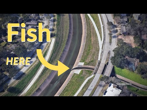 Brays Bayou Fishing | Fishing The Outflow