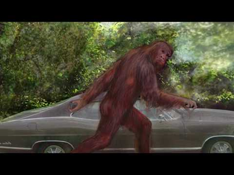 Bigfoot and High Strangeness: Scientific Explanations