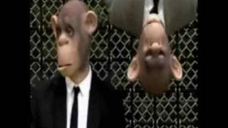 Peter Fox - Stadtaffe - Video