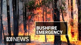 Homes destroyed, people trapped as NSW burns | ABC News