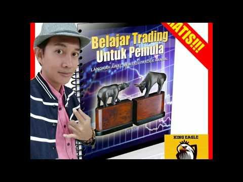 belajar-trading-forex-untuk-pemula-gratis