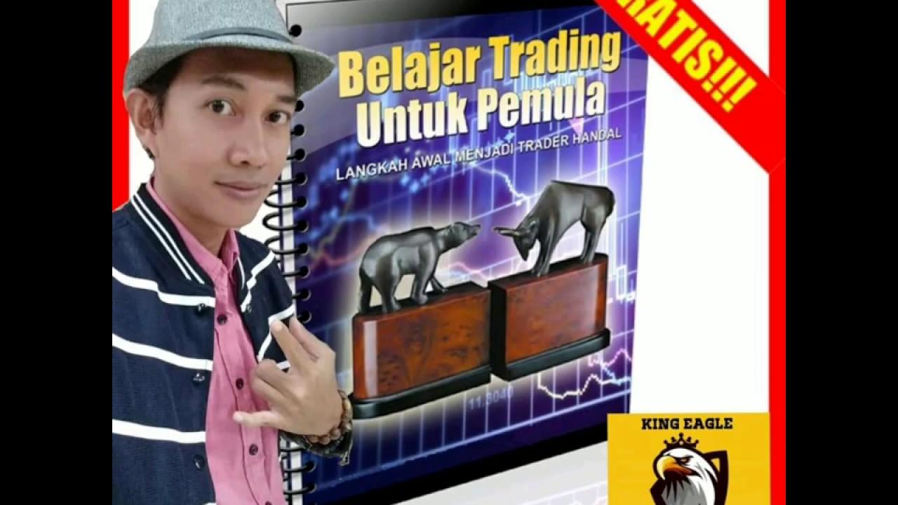 Panduan Memulai Belajar Forex Trading Dasar untuk Pemula
