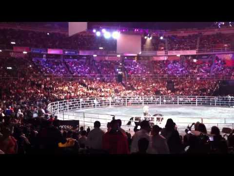 Llorar - Joan Sebastian en el Palacio de los Deportes mp3