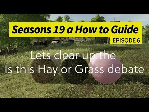 Seasons 19 - A How to Guide - Lets Clear up the Hay or Grass Debate